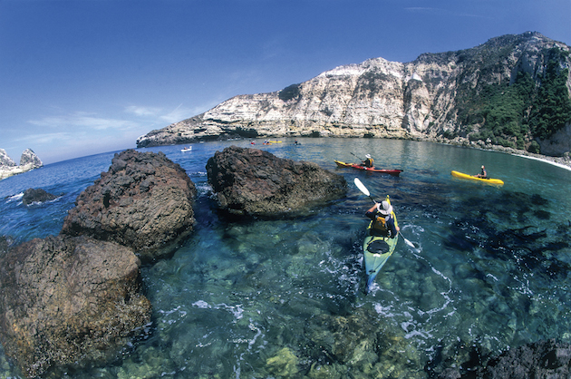 Channel Islands - Sasquatch The Bus