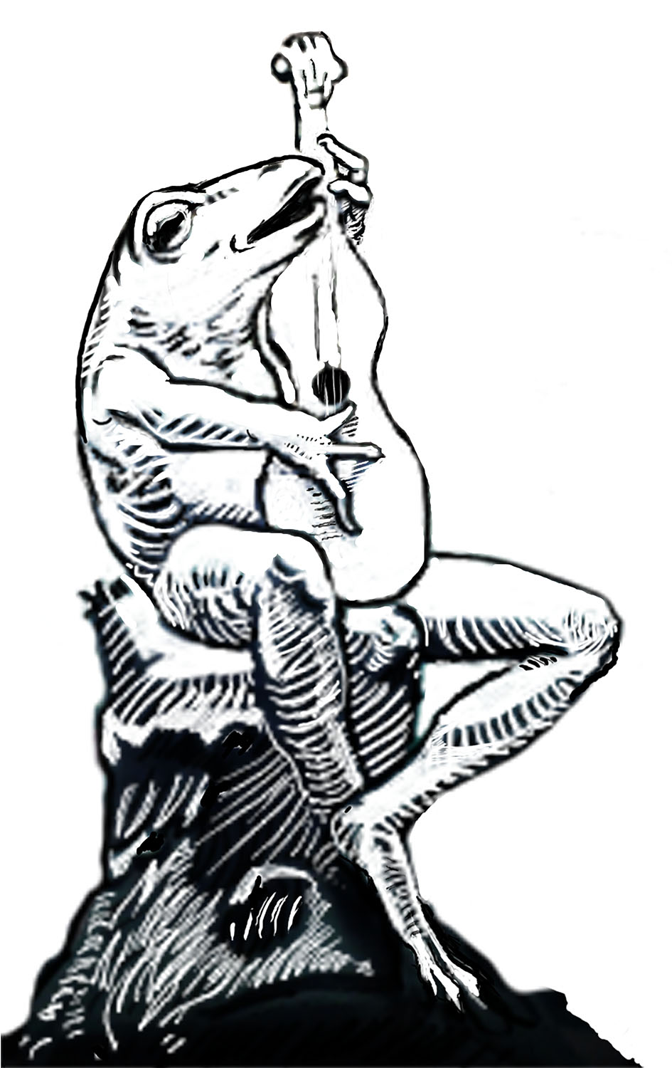 Singing Frog , 2016. Giclee print on Photographique paper.