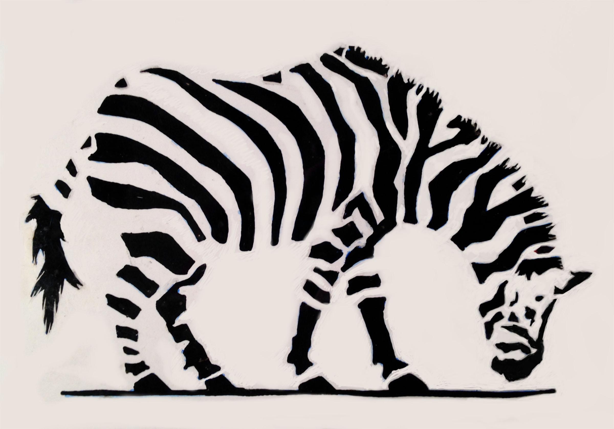 Zebra , 2016.  Giclee print on Photographique paper.