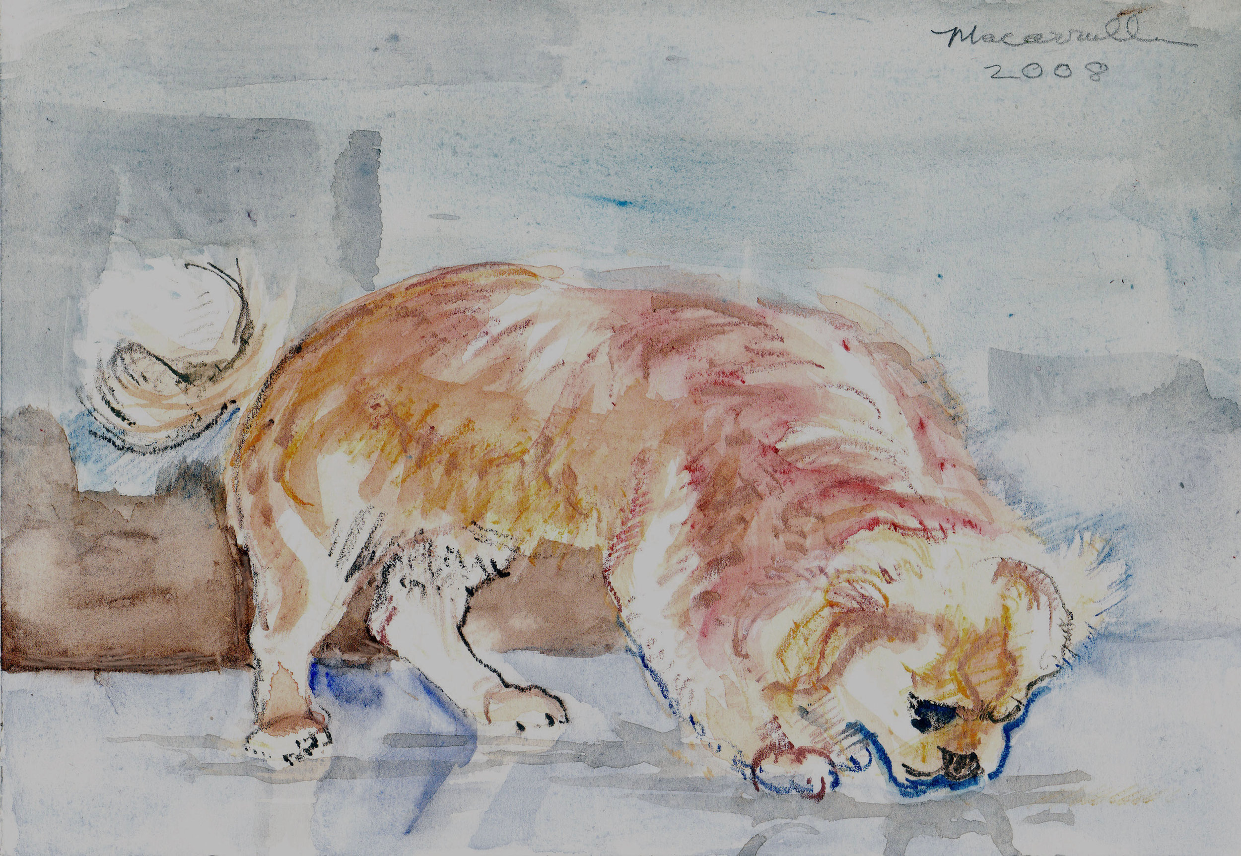 "Champ I,  2008 Watercolor, 7"" X 10 1/4"""