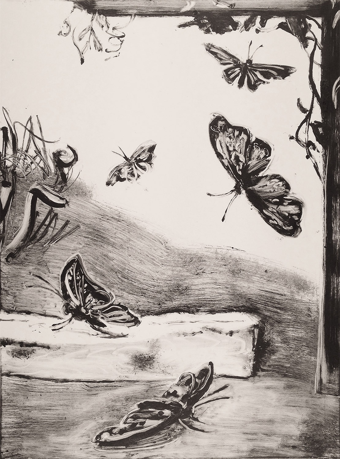 "Butterflies,  2018 Monotype. 24"" X 18"""