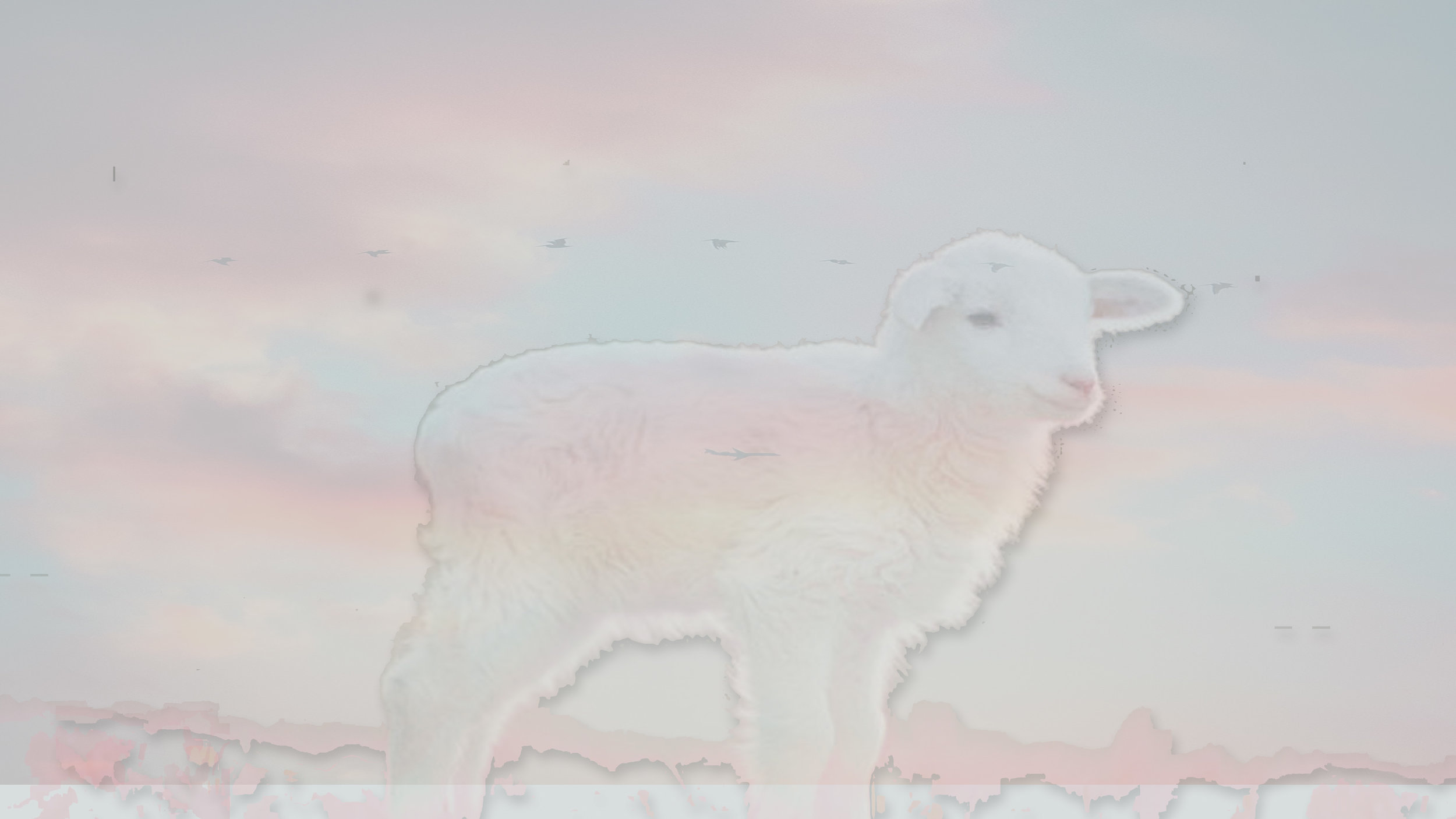 Behold the Lamb of God Scripture background .jpg
