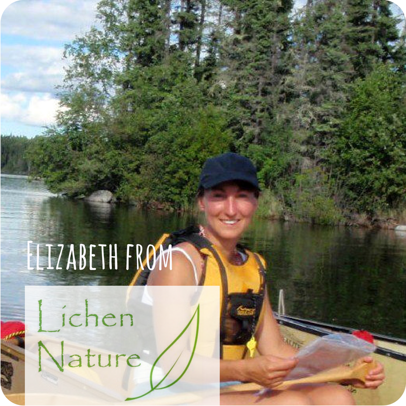 - Elizabeth Bekolay from Lichen Nature has been studying the natural world since birth. Nature is a place where she finds peace, healing, adventure and inspiration. Elizabeth's knowledge and skill at facilitating nature therapy and ecological literacy are a gift to our group.
