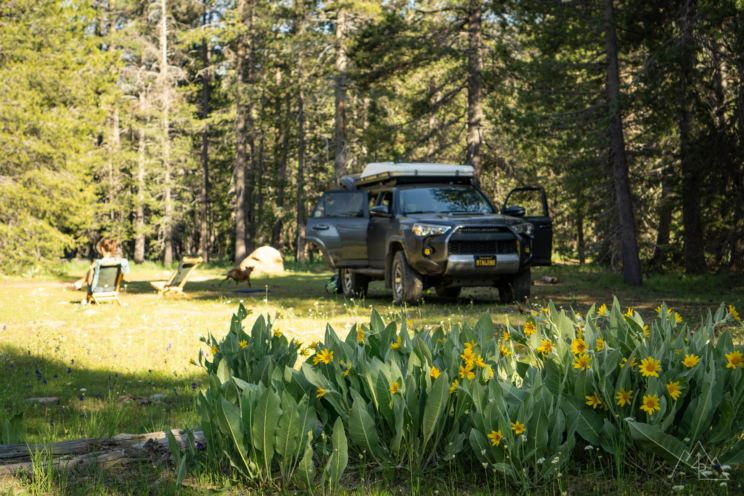 MosquitoCamping_072019-25.jpg