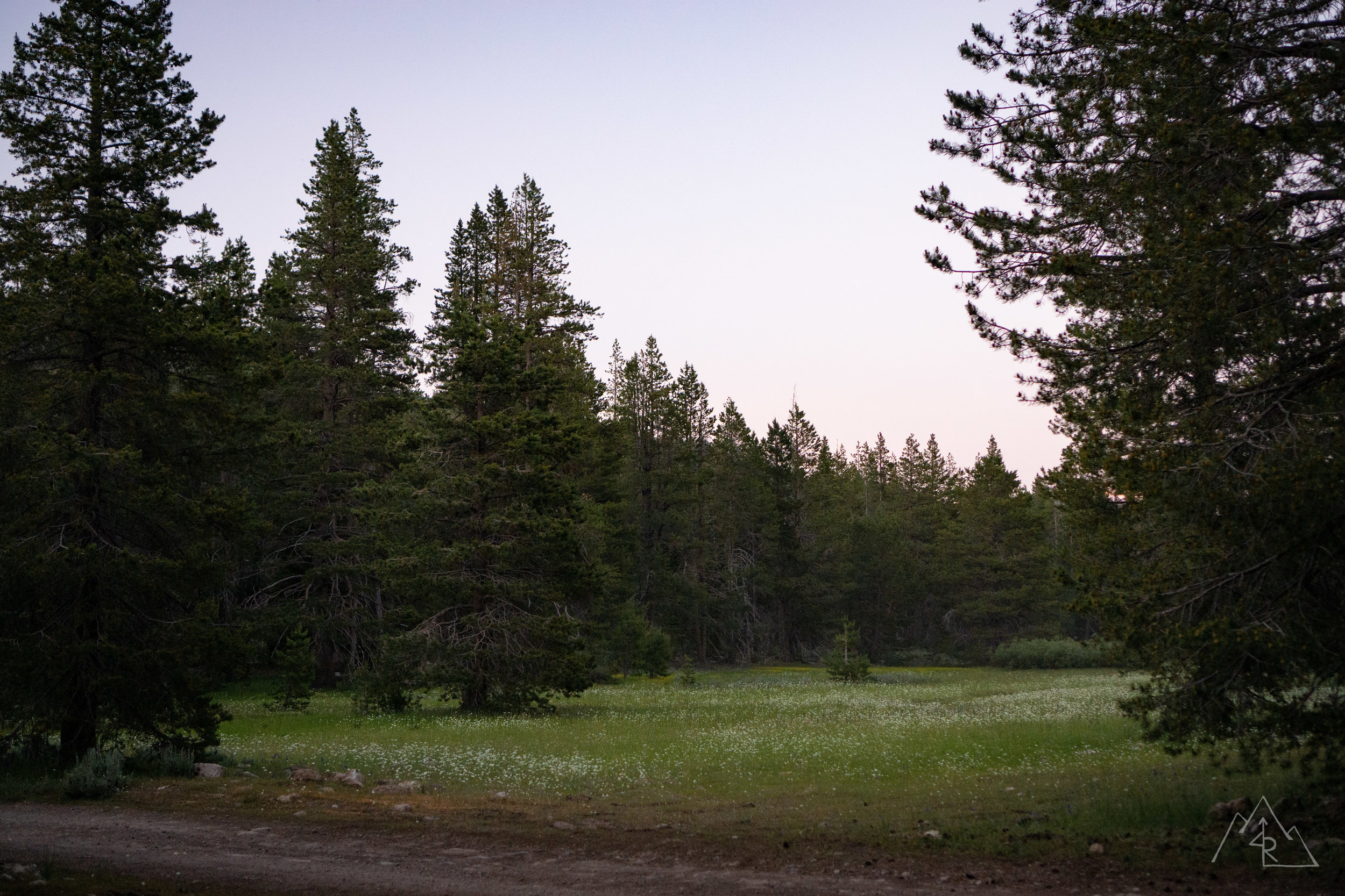 MosquitoCamping_072019-65.jpg