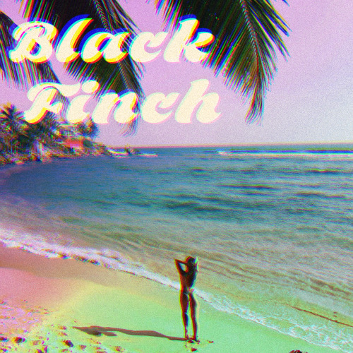 BLACK FINCH - MUSIC TO JUST CHILL OUT AND DIE TO //