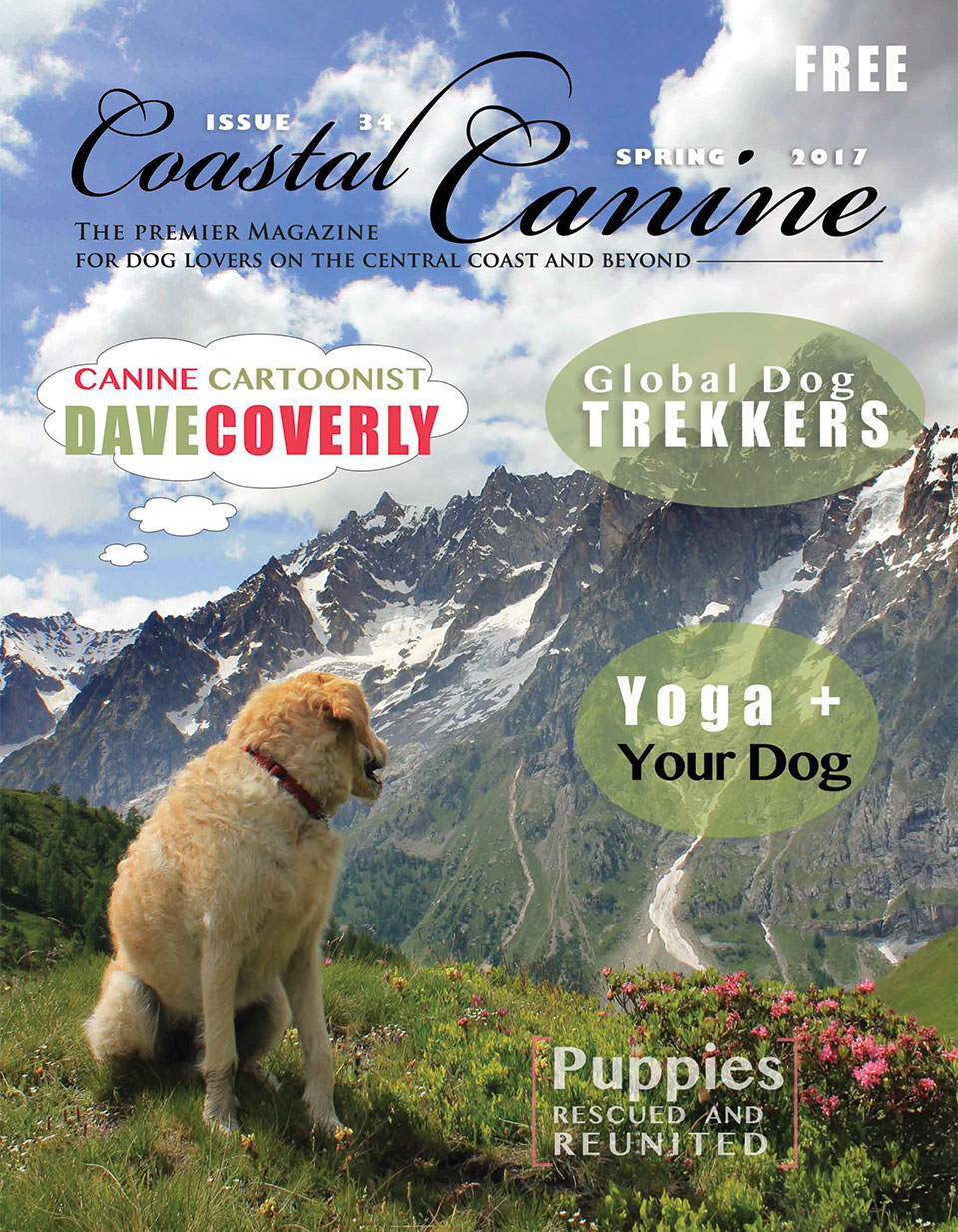 coastal-canine1.jpg