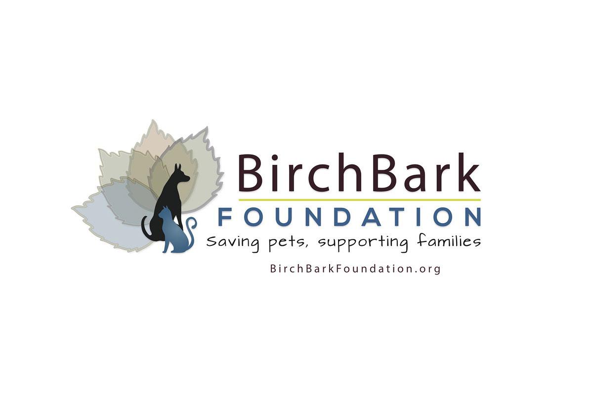 Birchbark.jpg