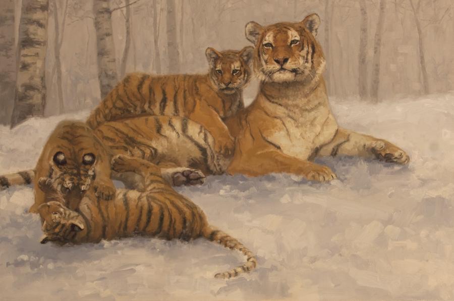 Siberian Tigers  20x30.jpg