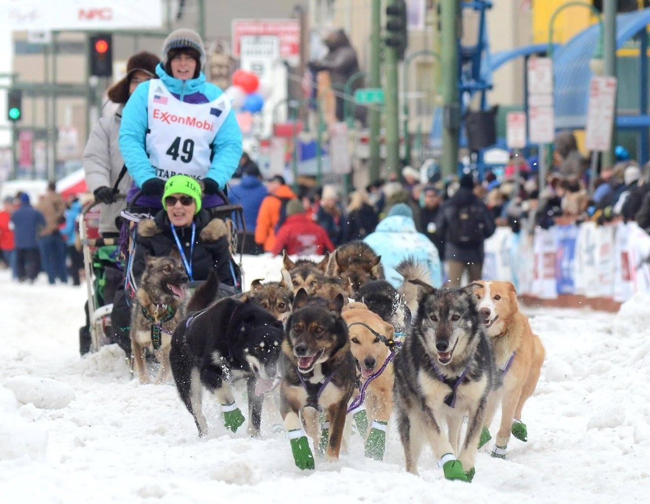Ceremonial start of 2016 Iditarod             Photo by: Sam Towarak