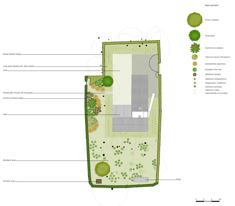 Juggs road planting plan.png