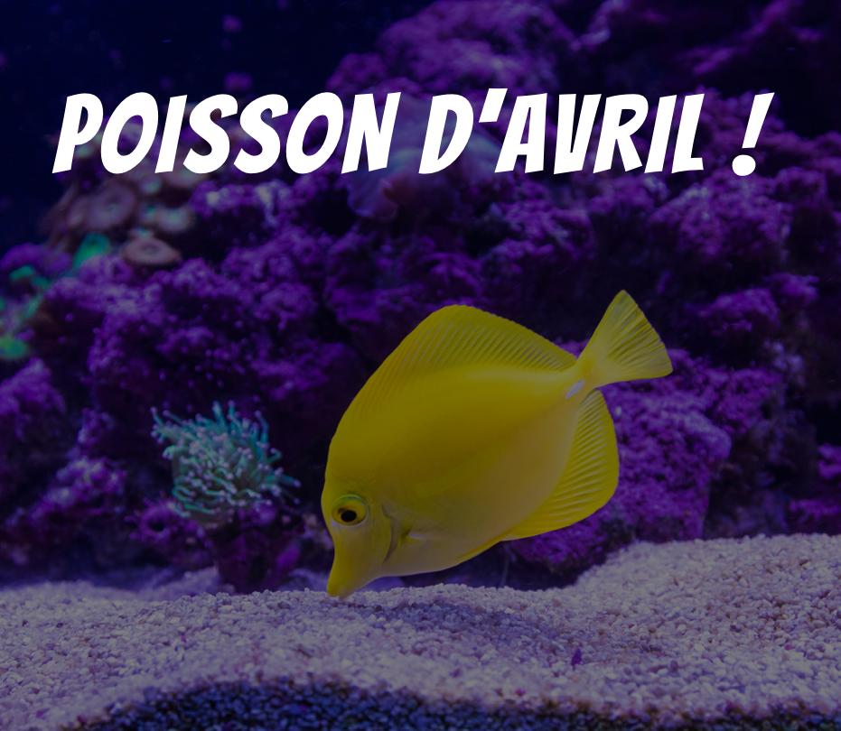 pont-arcachon-cap-ferret-poisson-avril.png