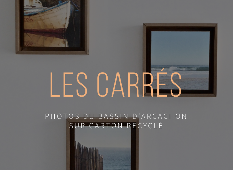 bassin-arcachon-photo-carton-recycle.png