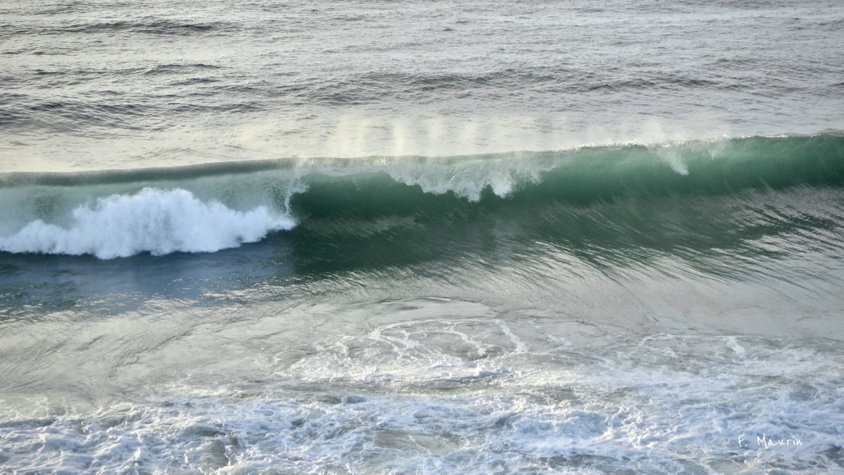 photo-surf.jpg