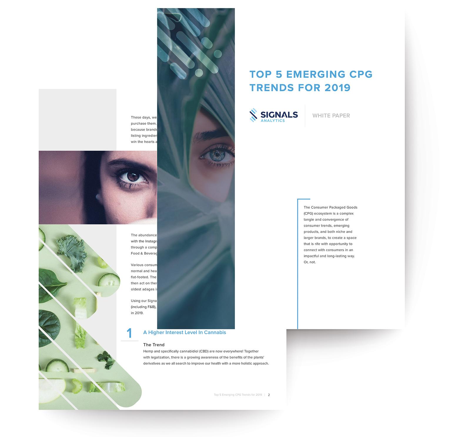 white paper screen shot-web.jpg