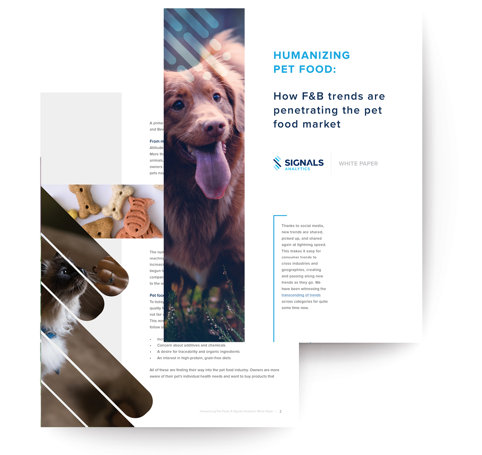 WP Screen Shot for Landing Page - PetFood .jpg