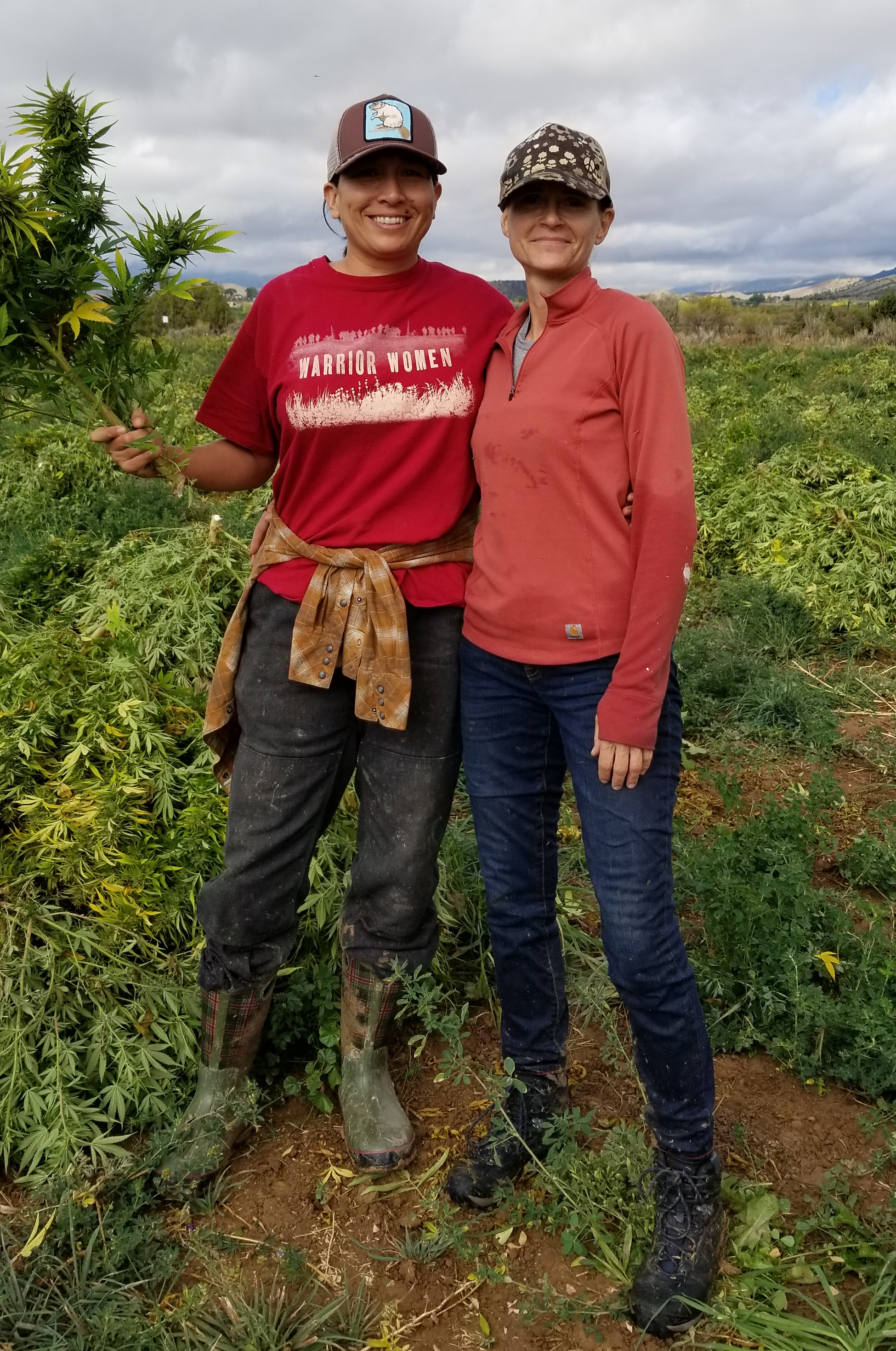 Dionne Holmquist - Founder of Hemp Quest Ventures, Owner of Hemp Spirit Extracts, & Slow Hemp Associate  Chris Holmquist - Owner of About It & Slow Hemp Associate  Photo credit Hemp Quest Ventures: 2018 Hemp harvest in Colorado.