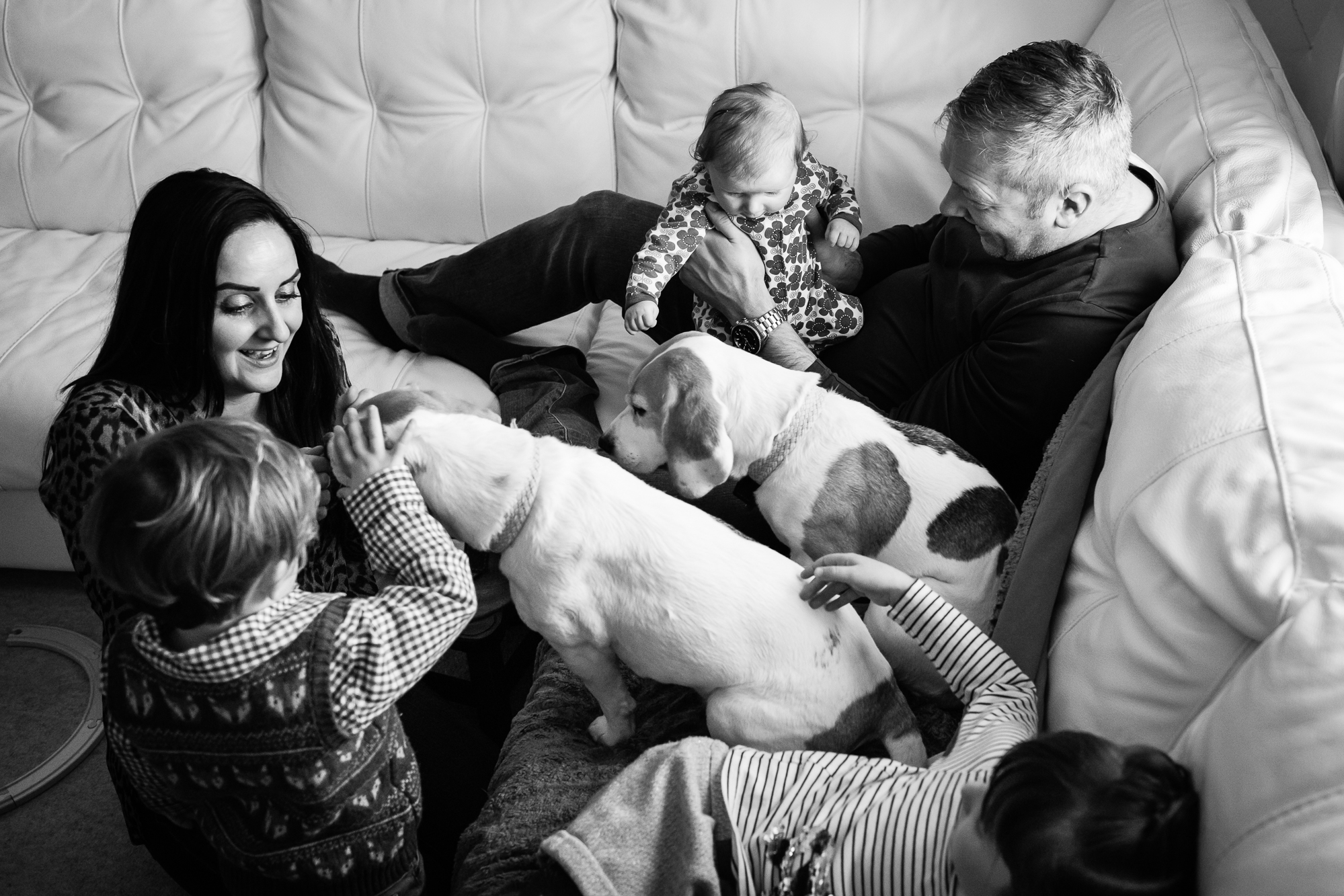 Alice Chapman Photography family pet natural unposed photos Cambridgeshire