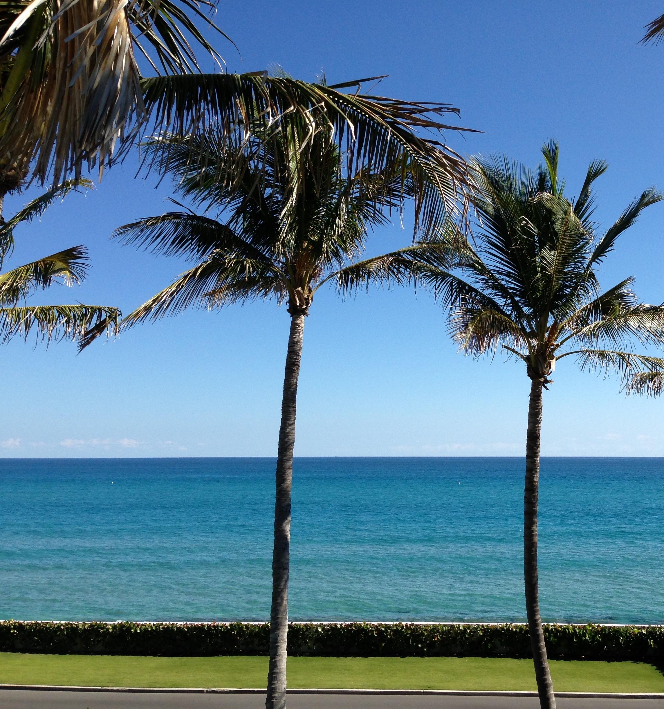 serving palm beach county.jpg