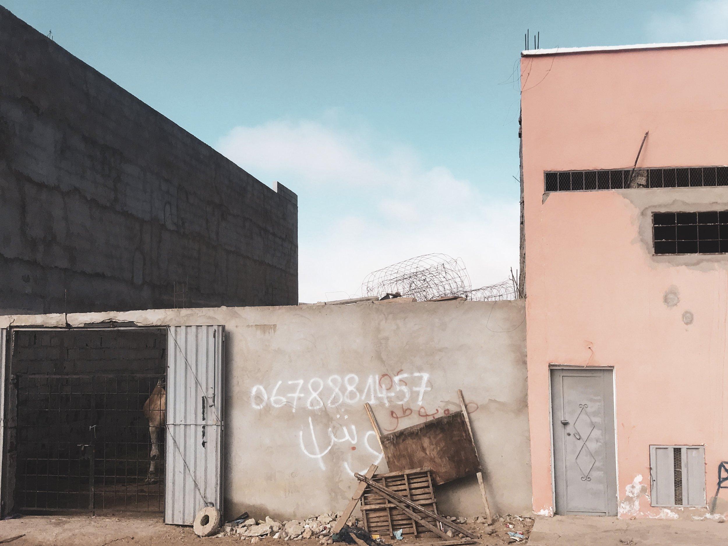 Western Sahara by SIXFOUR