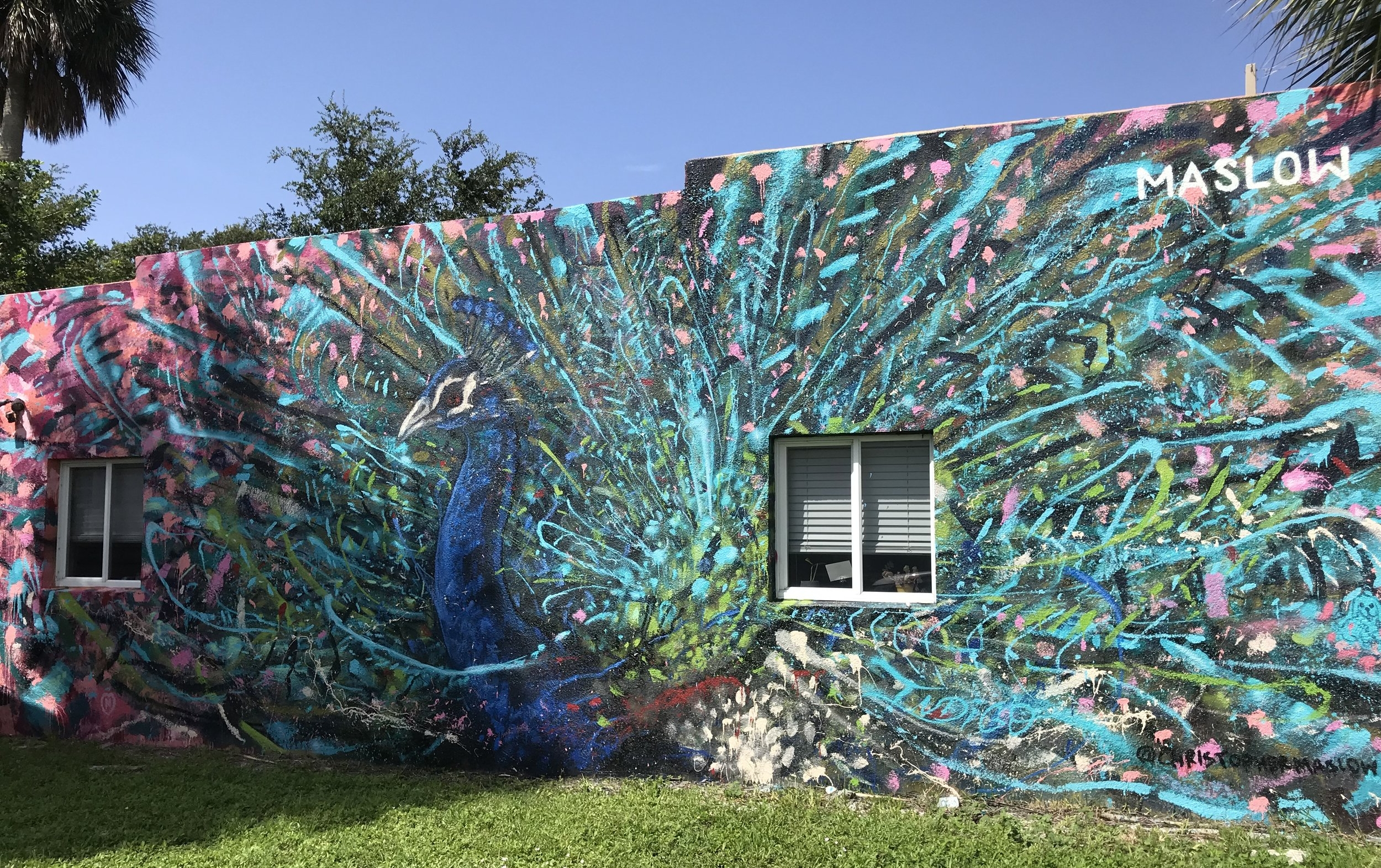 """Chris Maslow, """"Exploding Peacock,"""" Hoven Real Estate, 457 Montreal Ave"""