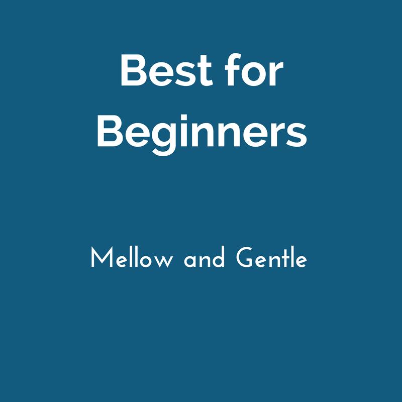 beginner friendly.png