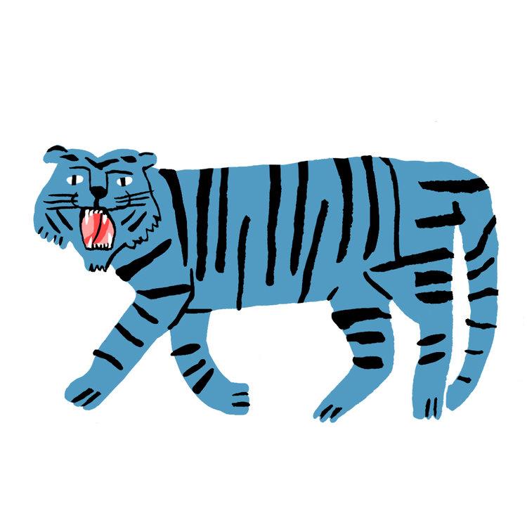 Lucy Kirk - Big Cat