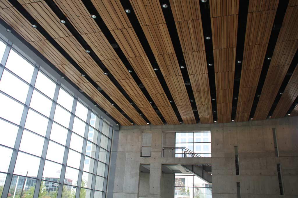 Linear-Dallas-Performing-Arts-Dallas-TX.jpg