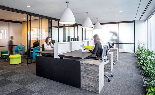 """The Lyrical office in NYC features a clean and modern design with employee happiness in mind. The fully-accessible torsion-spring panels have just a 1/8"""" reveal (NRC 0.90) and the stretched conference room luminous membranes are micro-perforated for acoustics (NRC 0.65-1.05). Wood finishes and plants create a sense warmth throughout the space 🌳 ————————————————— Project: Lyrical Office, Manhattan Architect/Designer: Architecture Plus Information (A+I, @a_plus_i) Ceiling Product: AURA/APTUS by Sky Acoustics, Luminous Ceilings by Newmat, Mesh Ceiling Tiles ————————————————— ✍🏼 Contact Design Strategies for more information: @designstrategies ————————————————— 📸 by @magdabiernat"""