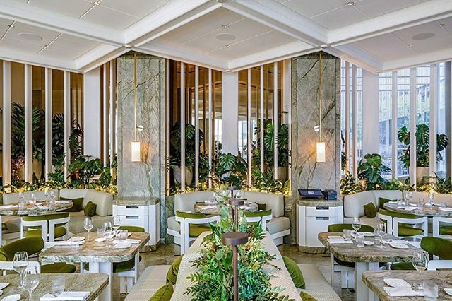 🍽 Opening less than one week ago, Joël Robuchon's protégé Alain Verzeroli launched Le Jardinier at 610 Lexington Avenue (53rd Street) with a light, seasonal tasting menu that's less about French fuss and more about simple, good clean food 🥒 Adding to the complexity of the ceiling were lights placed on the intersection of the panel joints - masterfully executed by Sky Acoustics 🌤 ————————————————— Project: Le Jardinier, 610 Lexington NYC Architect: Beyer Blinder Belle (@beyerblinderbelle) Designer: Joseph Dirand Architects (#JosephDirand) Acoustical Consultant: Harvey Marshall Berling Associates Ceiling Product: AURA/APTUS Acoustical System by Sky Acoustics ————————————————— 📨 For more information on how Design Strategies executed this project (or on the ceiling system) contact us: @designstrategies