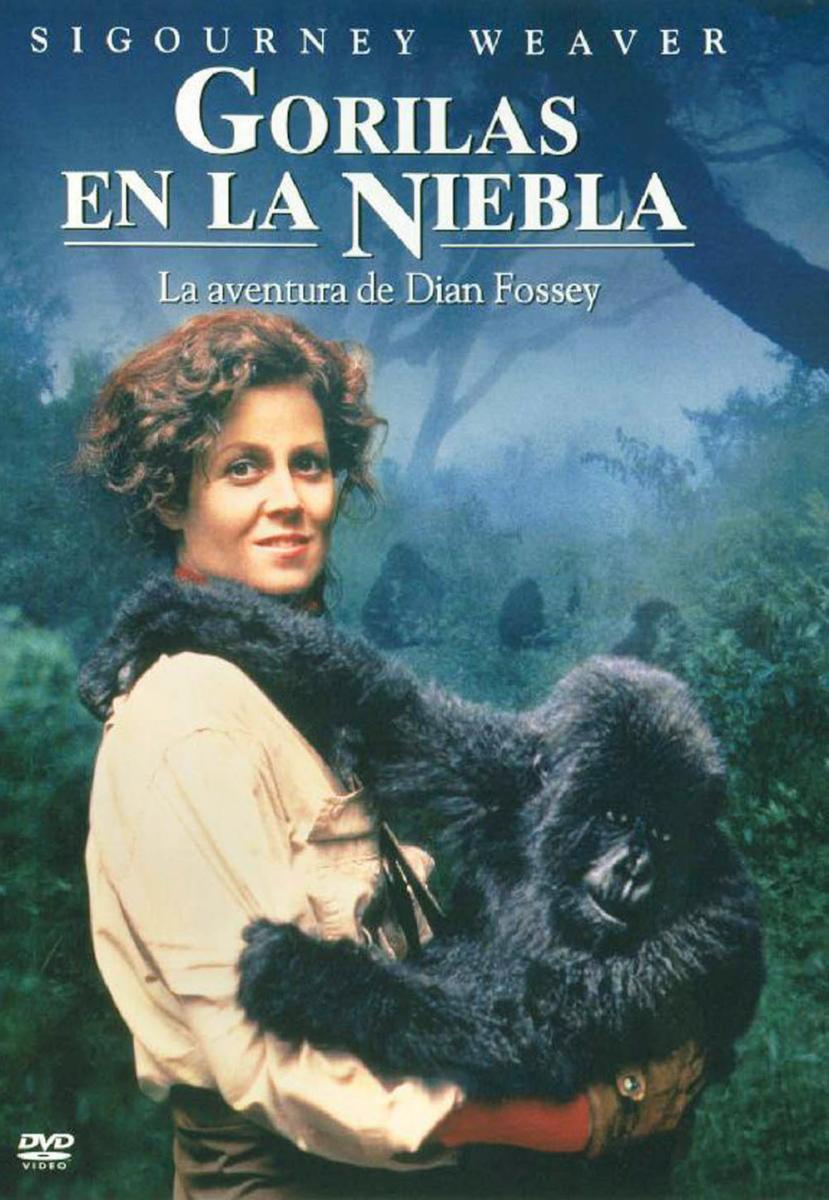 Gorilas_en_la_niebla-102012081-large.jpg