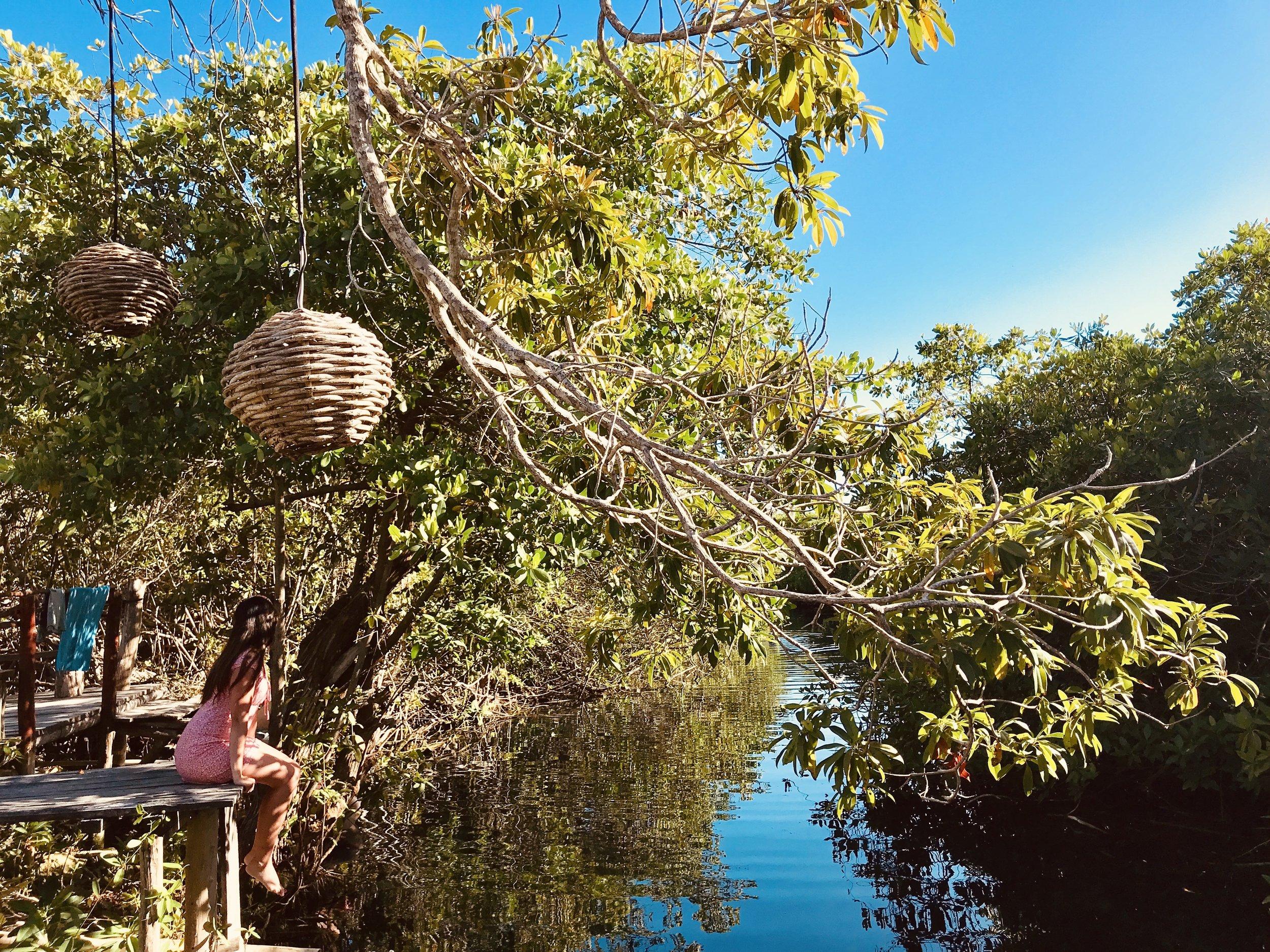 MangleX - Dormir entre manglares, hacer kayak en un inmenso cenote privado o caminar por las paradisiacas y kilométricas playas de Tulum…esas son solo algunas de las razones por las que pasar una noche en este lugar único.