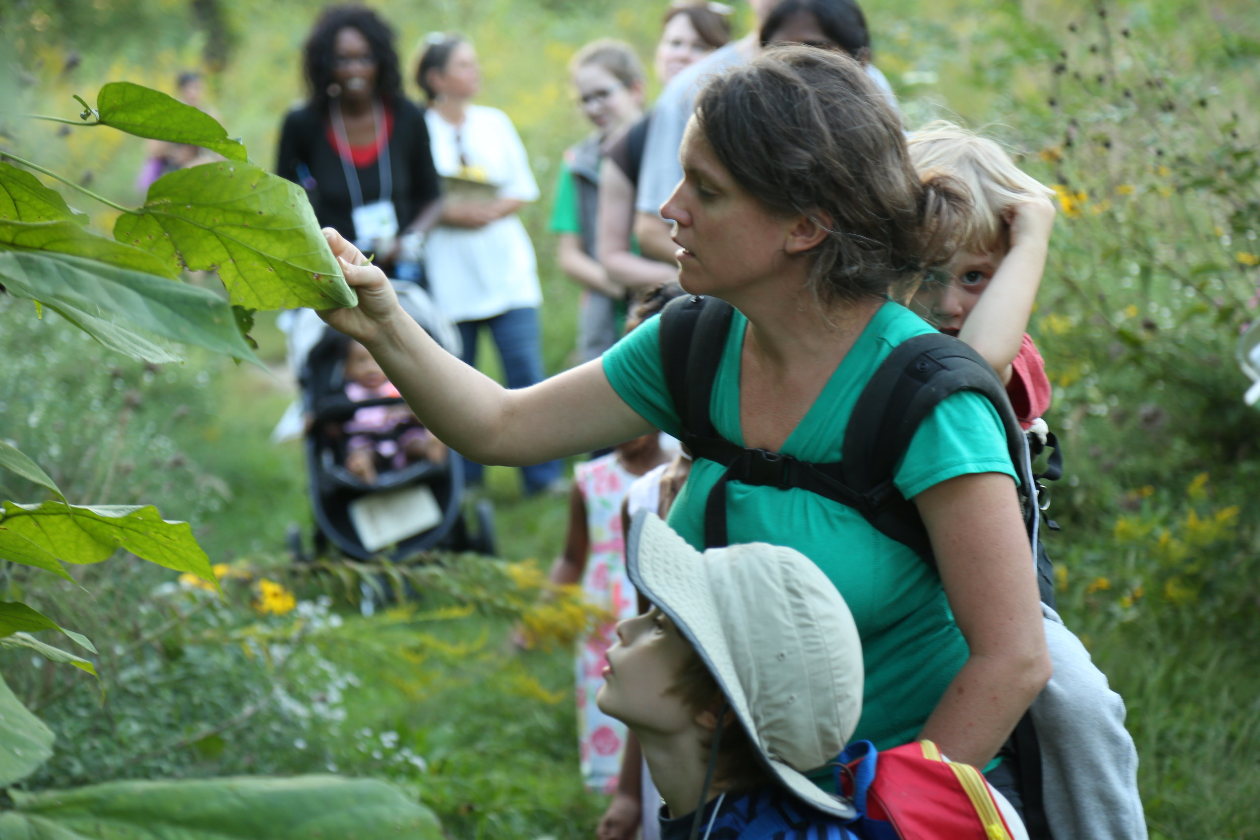 2016.09.25 BioBlitz_Credit needed_Academy of Science-St. Louis  16.jpg