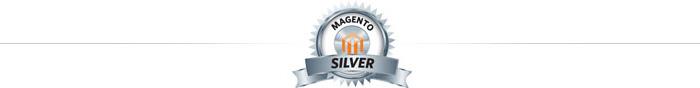 magento-silver-partner