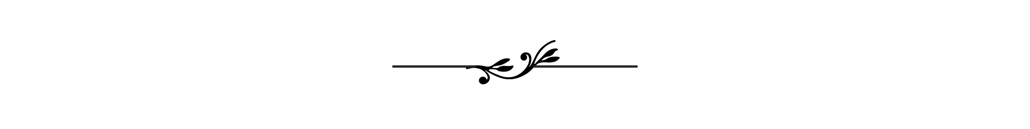 pw_divider_2-LRG.png