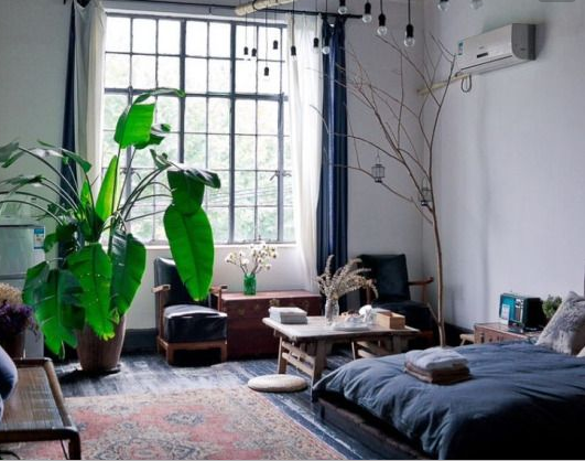 Plant as a statement piece. from modernfindings.tumblr.com