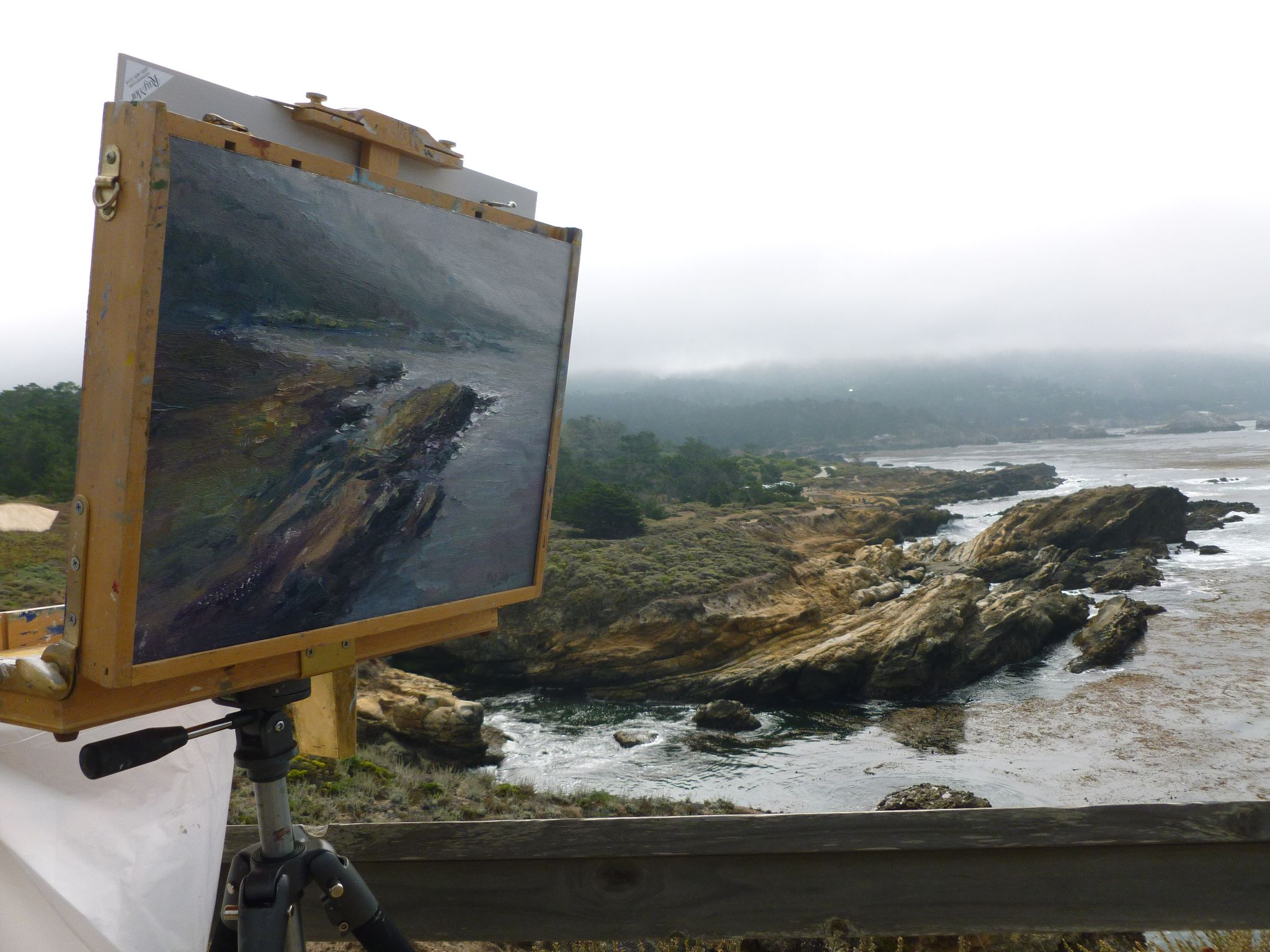 Mark Daly Painting The California Coast