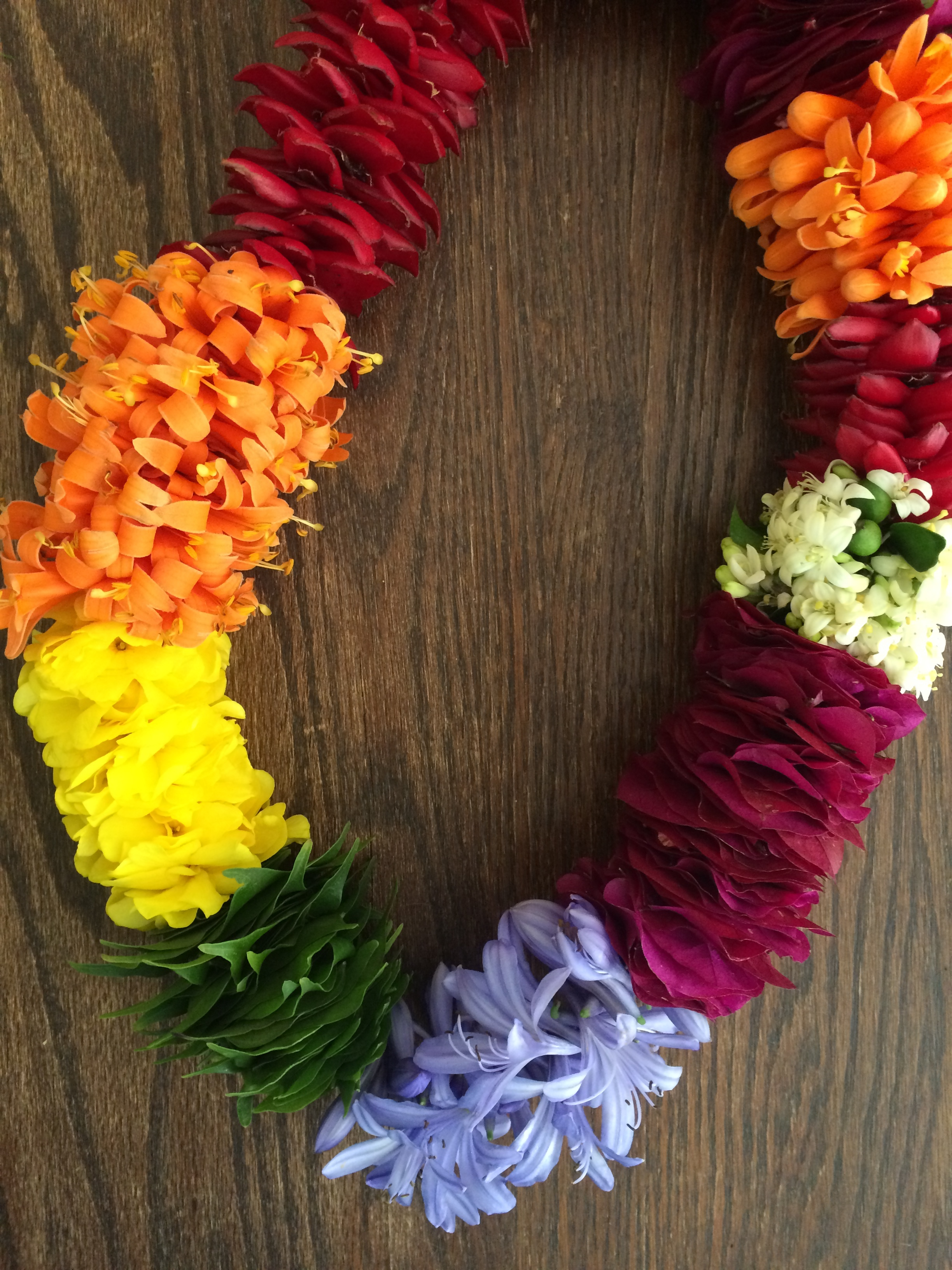 Rainbow Lei featuring a combination of various leaves and flowers found on Maui.   Made with a gradient of Ginger flower petals, Orange Trumpet vine, Maile leaves, Agapanthus flowers, Bougainvillea, and Mock Orange.