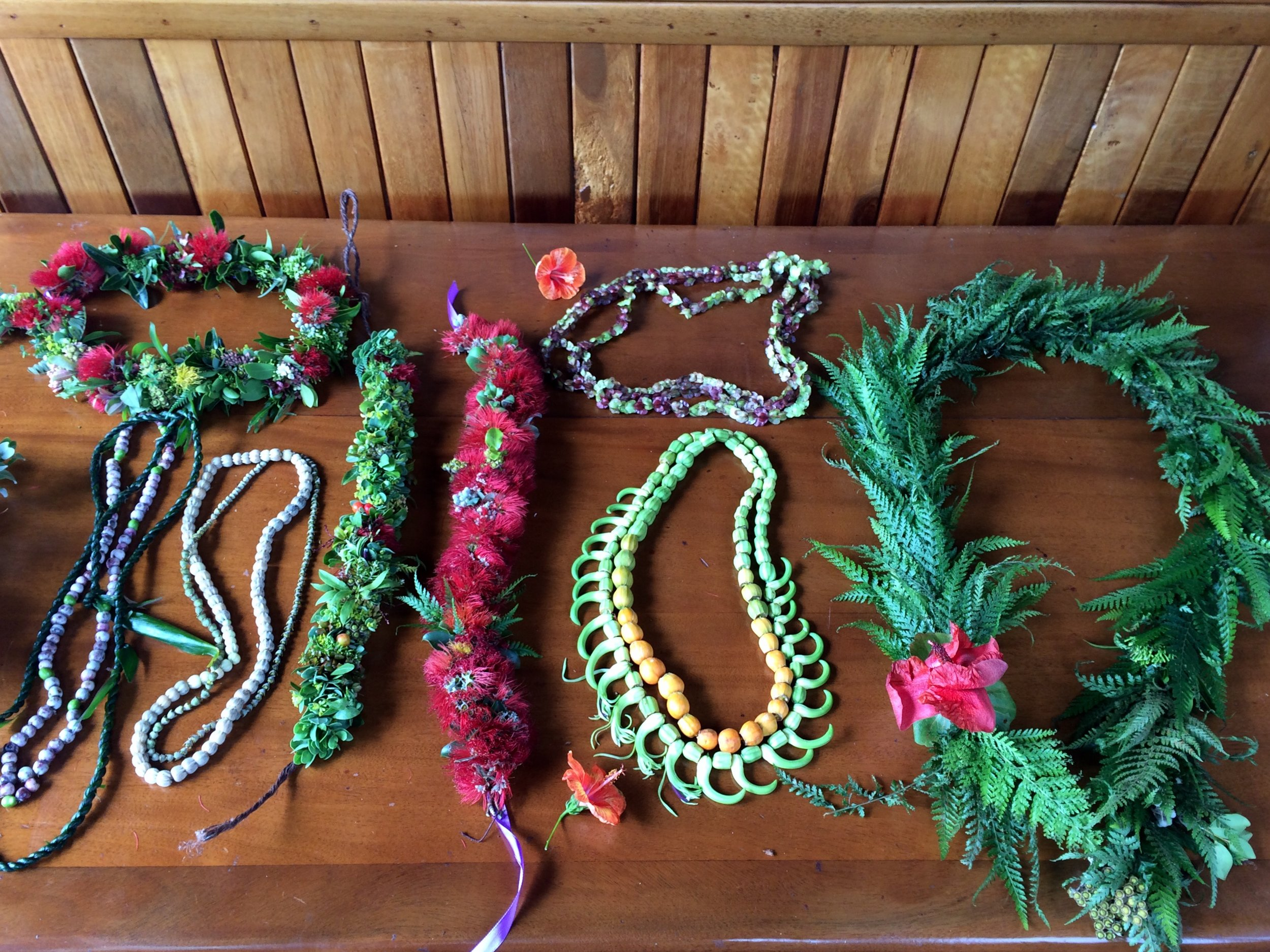 Native Wedding Lei   When challenged with an all native Hawaiian lei series, I reached out to many aunties, uncles, farmers, and the 'aina.  This is a collection of lei for a wedding, a variety of plants are used, some rarer than others, but all powerful in their own way.    Including, but not limited to:  ʻŌhiʻa lehua,   Metrosideros polymorpha , Palapalai,  Microlepia strigosa,   Hibiscus kokio,  ʻŌhā,  Clermontia hawaiiensis , 'Iliahi,  Santalum freycinetianum,  the endemic sandalwood, Pukiawe,  Leptecophylla tameiameiae , ʻŌhelo ʻai,  Vaccinium reticulatum , ʻAʻaliʻi,  Dodonaea viscosa