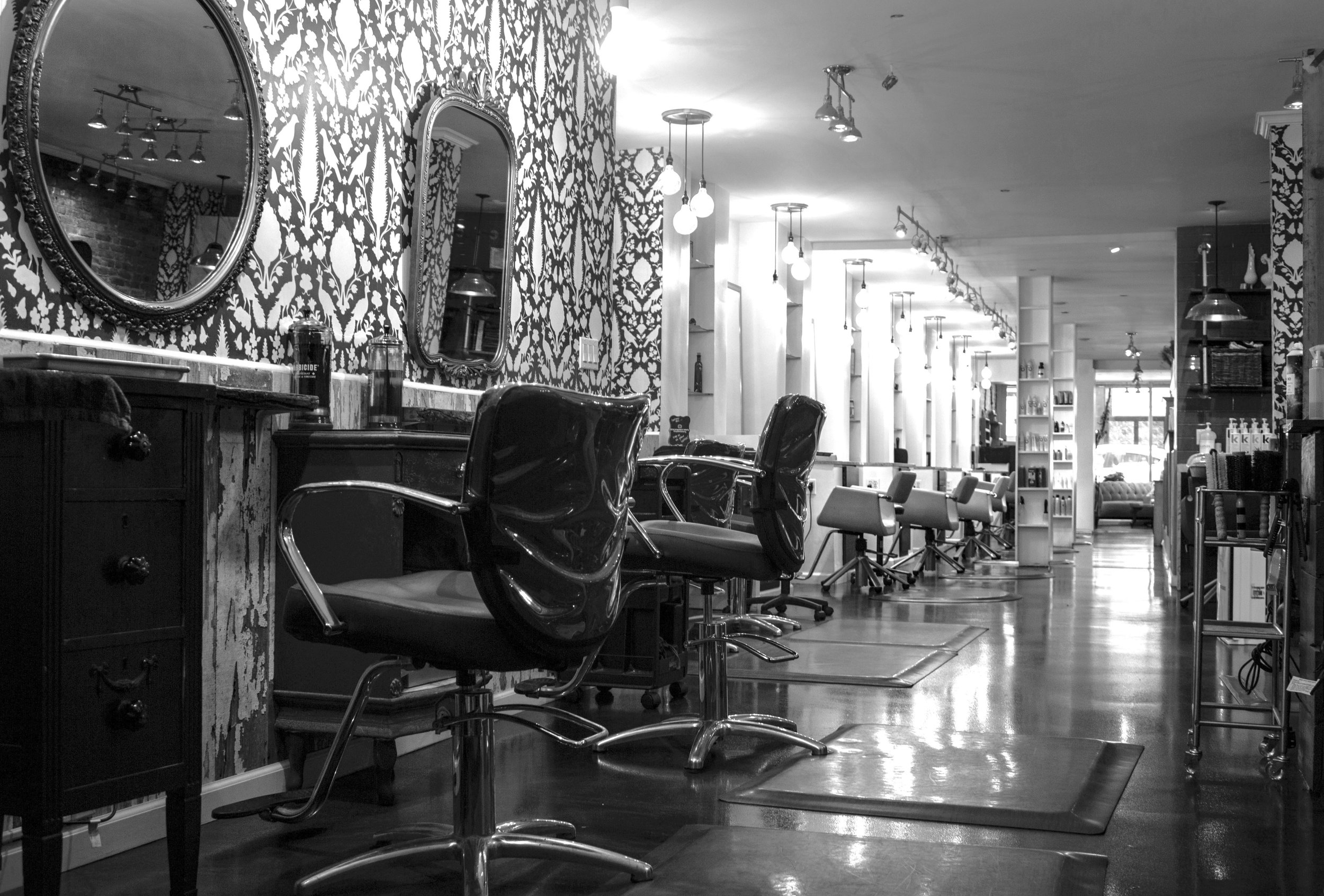 salon photo back to front.jpg