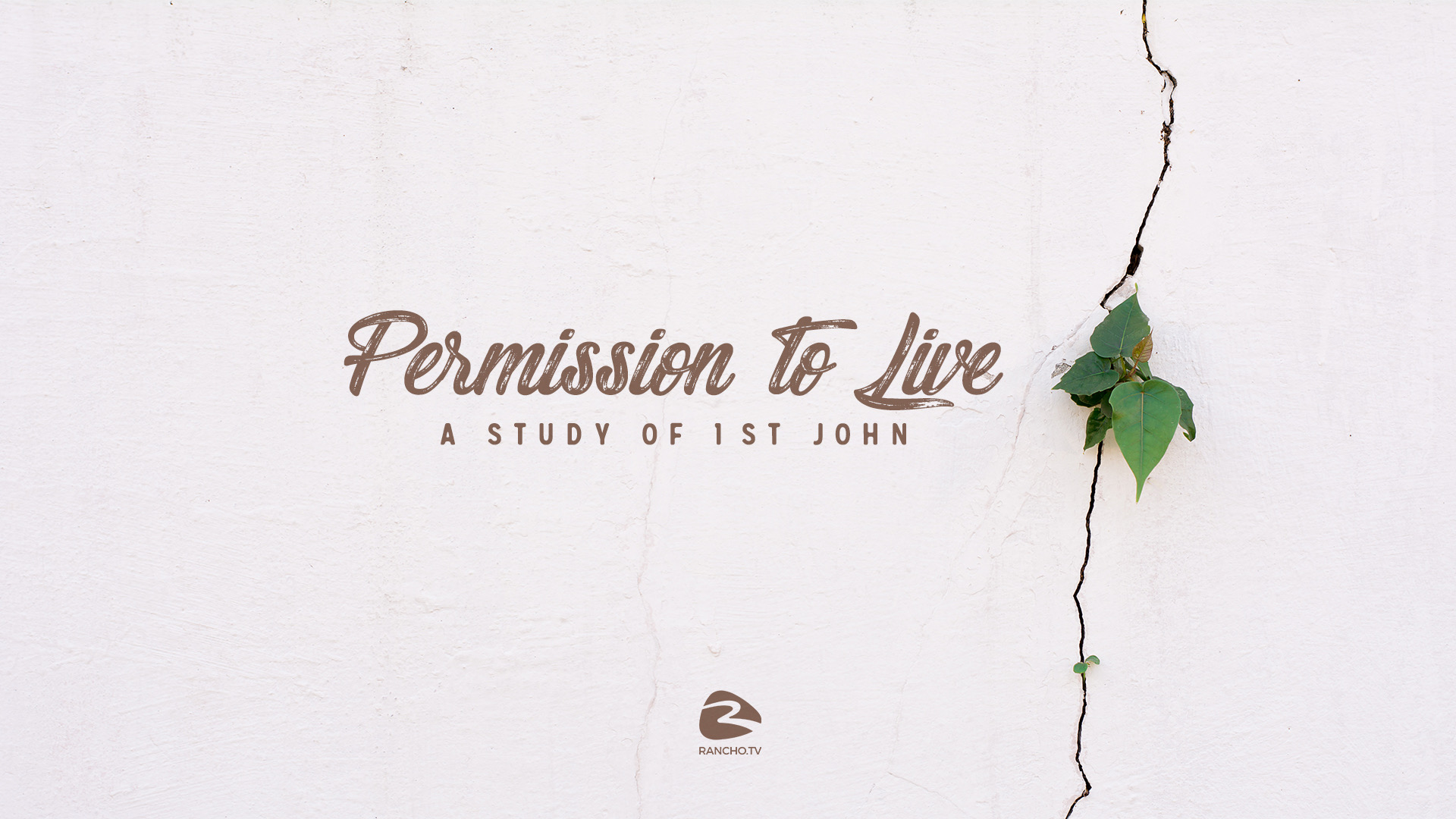 Permission To Live