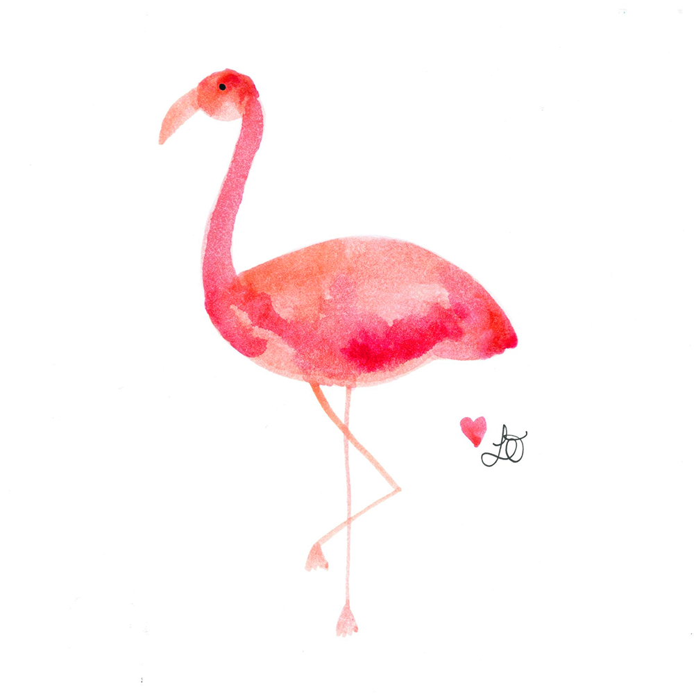 Graphic flamingo.png
