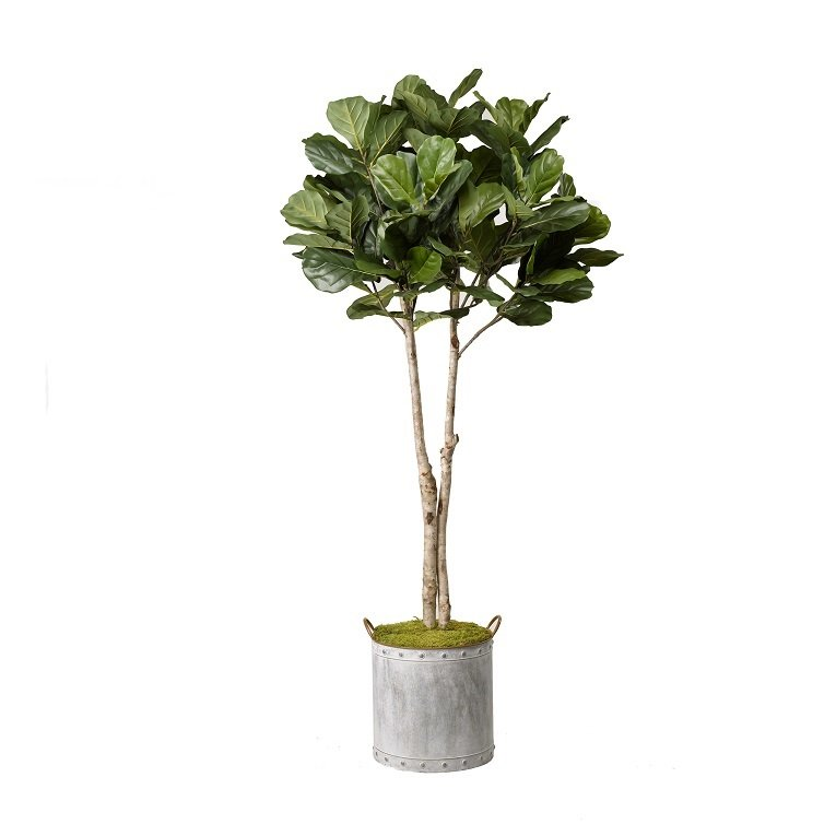 sipdinedesign artificial plants allergies 6.jpg