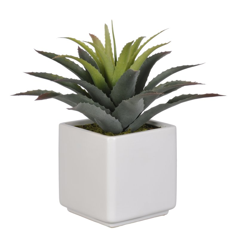 sipdinedesign artificial plants allergy 1.jpg