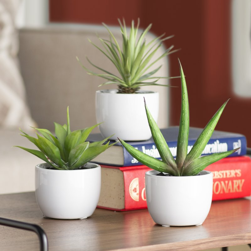 sipdinedesign artificial plants allergy 3.jpg