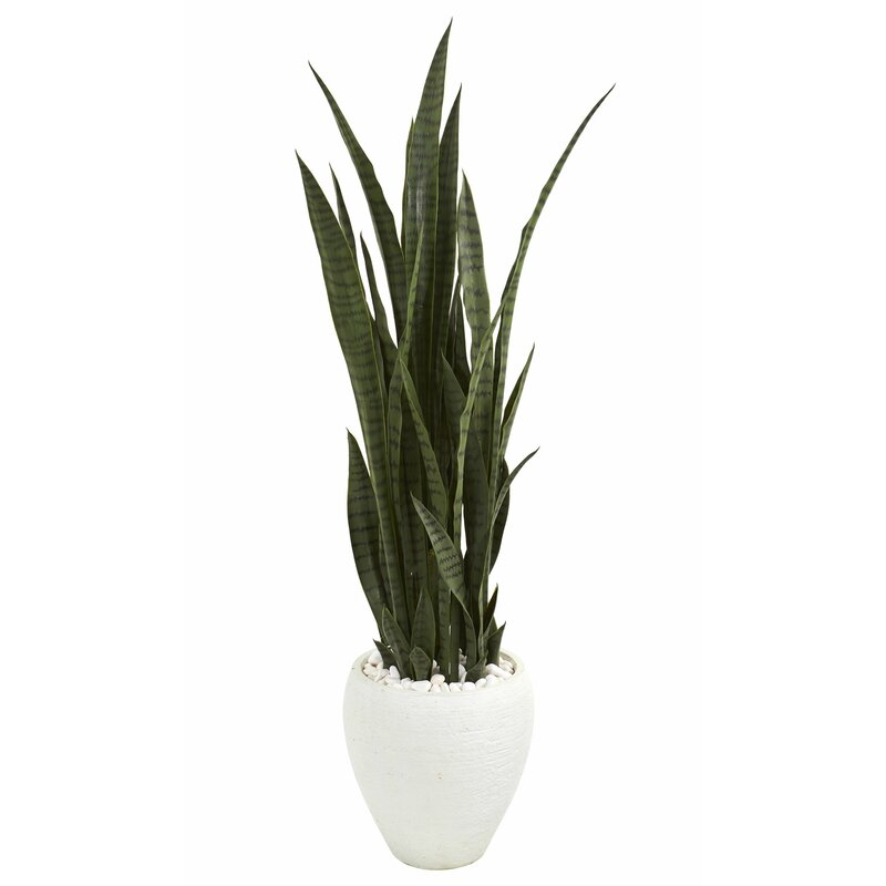 sipdinedesign artificial plants allergy 10.jpg