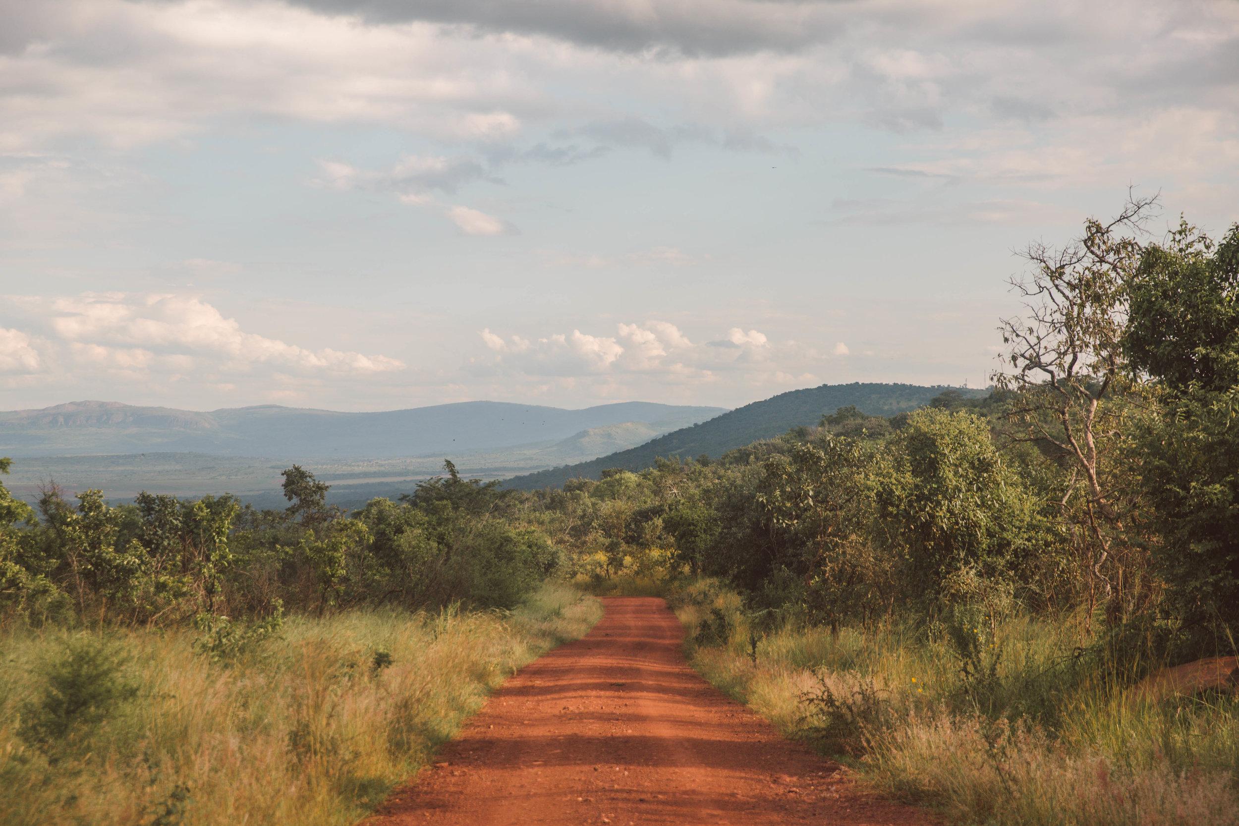 Sarah Buchanan - RwandanRoads.jpg