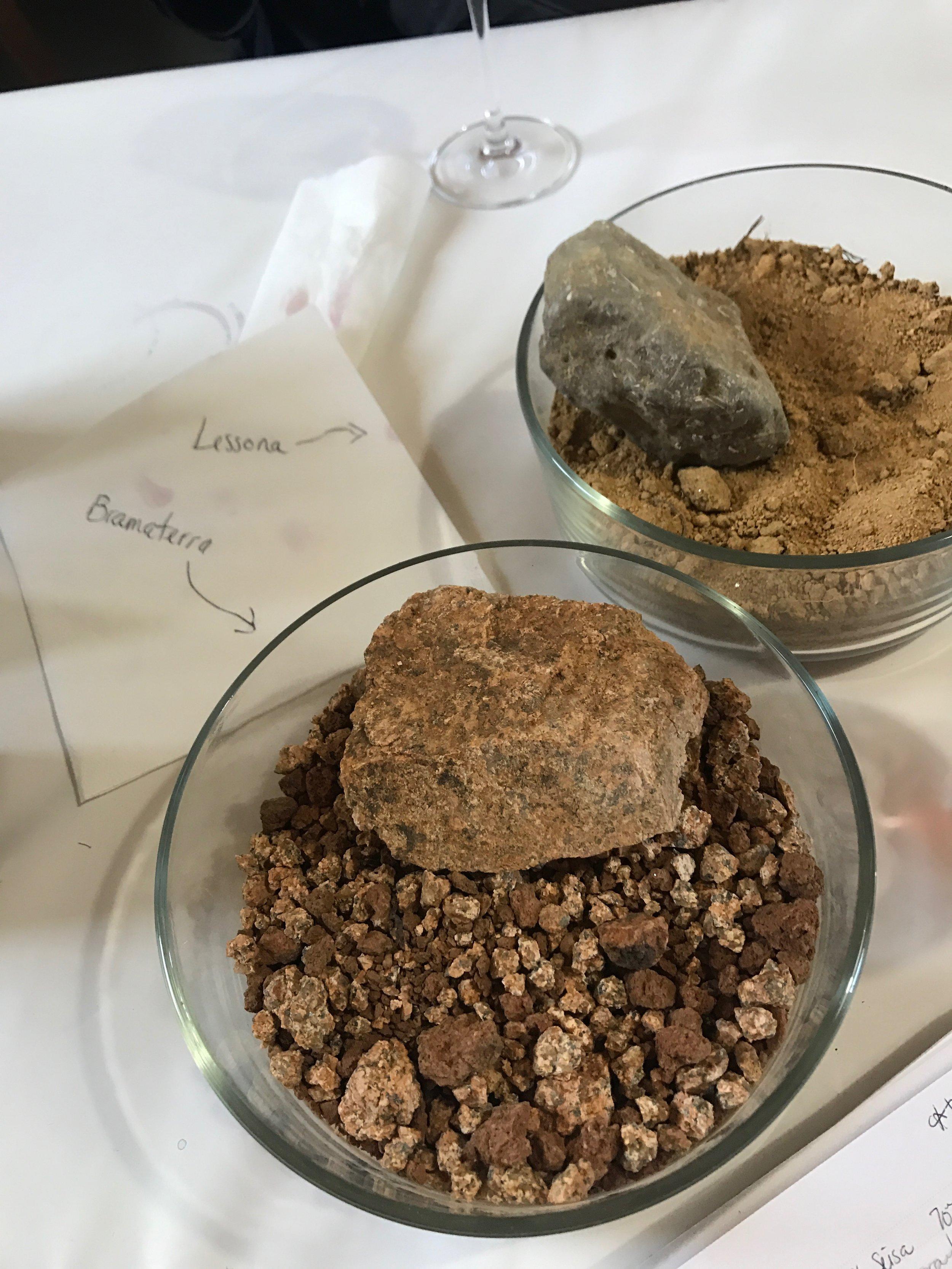 Colombera Garella - Lessona and Bramaterra soils.jpg