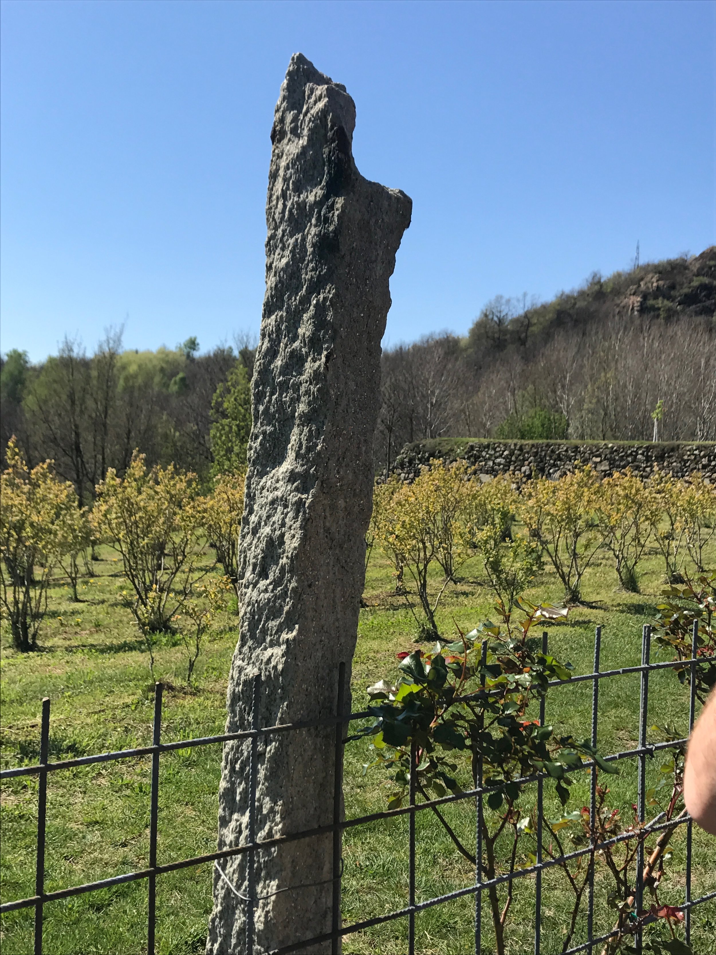Terre Sparse - local stone used to hold up trellises full of michaschist.jpg
