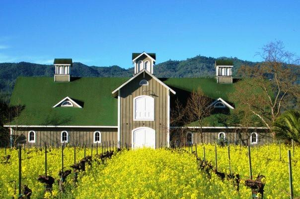 corison-winery.jpg